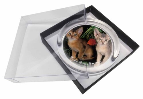 Abyssinian Cats 'Love You Mum' Glass Paperweight in Gift Box Christm, AC42lymPW