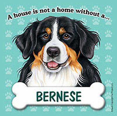 Bernese Mt. Dog Magnet Sign House Is Not A Home
