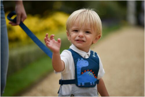 Little Life LITTLELIFE TODDLER REINS DINOSAUR Safety Harness BN