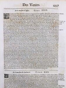 Venin-Serpent-1614-Herpetologie-Vipere-Scorpion-Mouches-Cantharides-Araignee