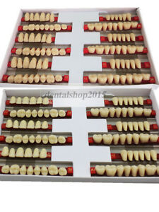 Details about 3 sets dental Acrylic Resin Teeth denture teeth Upper Lower  color A2