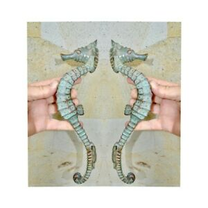 "2 small SEAHORSE solid brass door AGED old style house PULL handle 10/"" pair B"