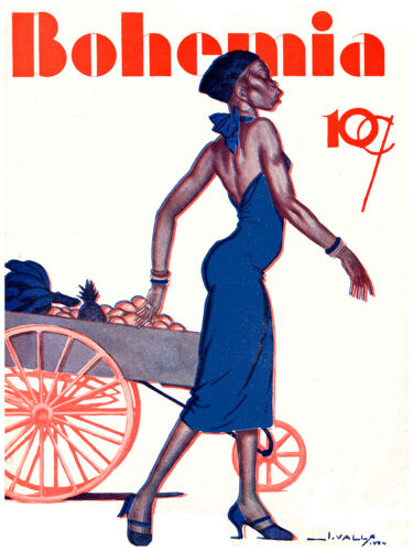 "118.Quality Design decor poster/""Black Woman n front of FRUIT cart/""interior art"