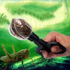 Reptile-Terrarium-Spider-Cricket-Clamp-Aquarium-Litter-Feeding-Cleaning-Tool