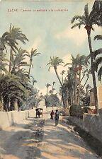 Spain postcard Elche Camino de entrada a la poblacion