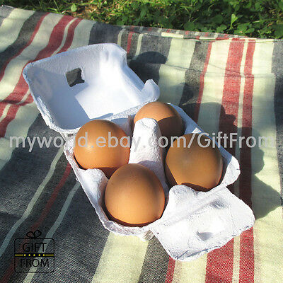 EGG CARTONS (4 Capacity) paper egg tray_egg box_soap bathbomb packaging