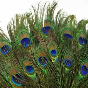 20Pcs-naturel-paon-queue-yeux-plumes-10-12-in-Chapeau-De-Fete-Decoration-US