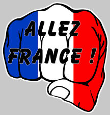 ALLEZ FRANCE EURO 2016 FOOT DRAPEAU POING 120mm AUTOCOLLANT/STICKER AUTO AA147