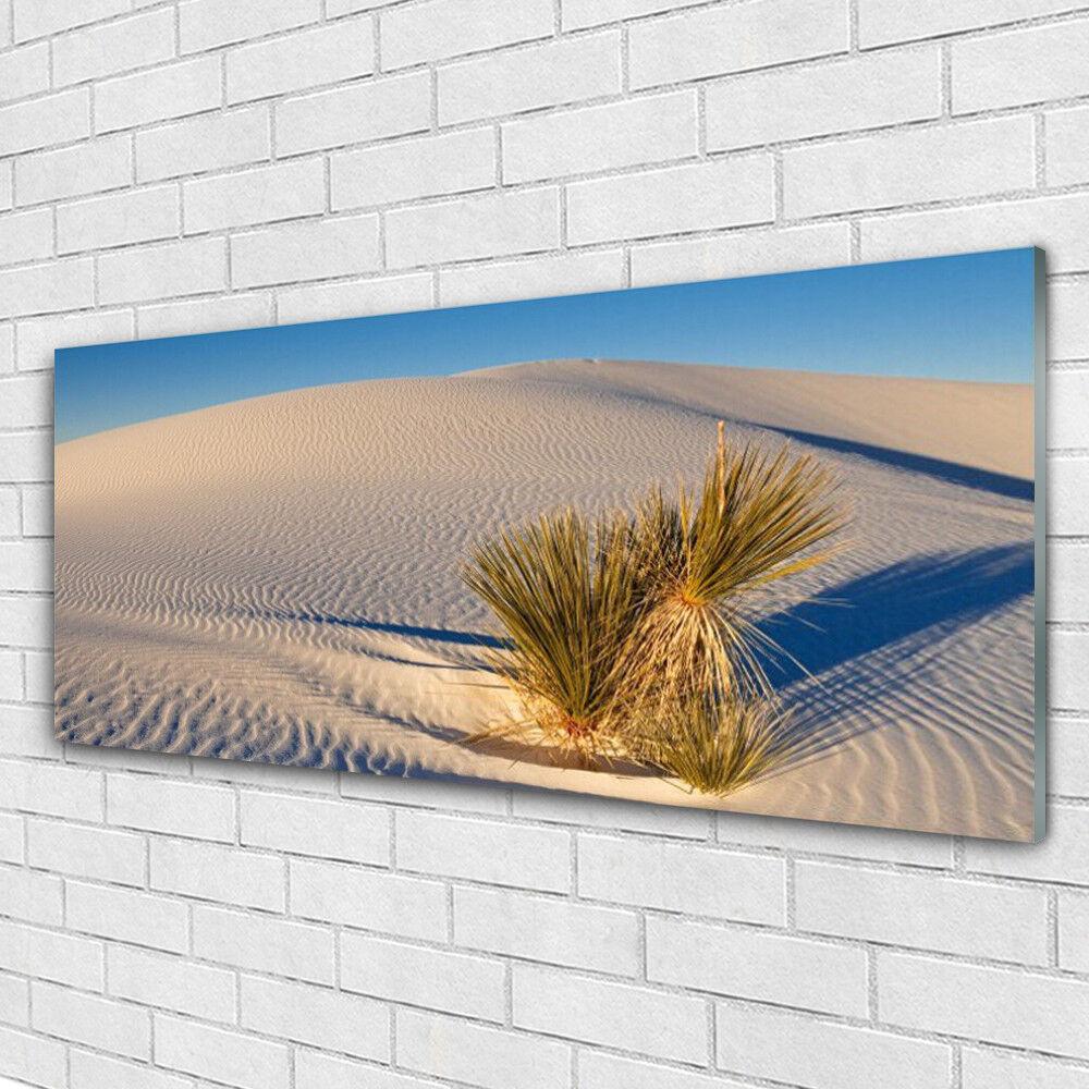Verre Imprimer Wall Art Image 125x50 Image Désert Paysage