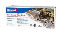 "Humane Live Animal Trap Rats Chipmunks Weasels Voles 16"" x 6"" 6.375"" Rat"