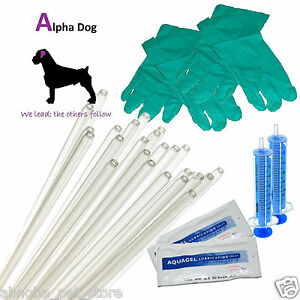 """10 - 10"""" Tubes Dog AI Rods Standard Kit Canine Artificial Insemination Breeding"""