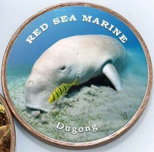 Red Sea Marine unusual coin Somaliland 1 shilling 2018 UNC Dugong