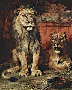 """"""" Lions """" Par Paul Friedrich Meyerheim. Animaux. 11x14 Imprimé"""