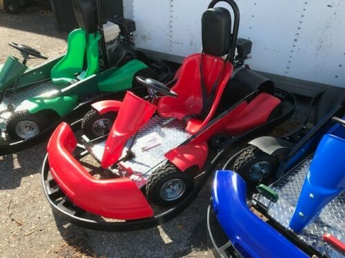 Details about  /New 13hp Wild Cat Go Karts by Kartworld since 1978