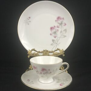 VTG-Dessert-Plate-with-Cup-and-Saucer-Bareuther-Waldsassen-Bavaria-Pink-Floral