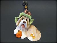 Bearded Collie Figur als Halloween Beardie mit Kürbis braun-weißer Beardie