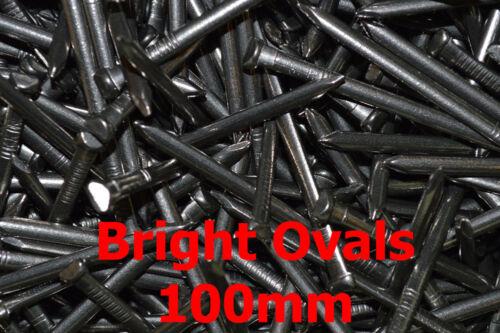 lumineux Ovale Clous Choisissez votre taille 1000g 1 kg FWS trade-fixings direct