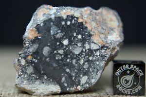 NWA-11266-Official-Lunar-Feldspathic-Regolith-Breccia-Meteorite-21-8-grams