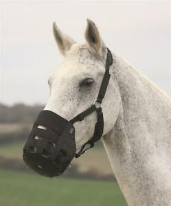 Shires-Comfort-Padded-Nylon-Horse-or-Pony-Grass-Grazing-Muzzle-All-Sizes