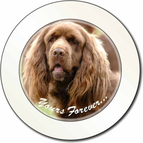 Sussex Spaniel 'Yours Forever' Car/Van Permit Holder/Tax Disc Gift, AD-SUS1yT