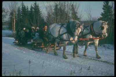 Art Responsible 728033 Sleigh Ride Eastern Canada A4 Photo Print