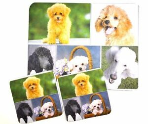 3 pc Set Dog Lovers Mouse Pad 9x7 + 2 Coasters POODLE Puppies Little Gifts