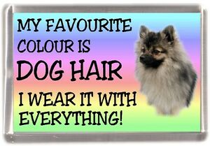 German-Spitz-Fridge-Magnet-034-My-Favourite-Colour-is-Dog-Hair-034-by-Starprint