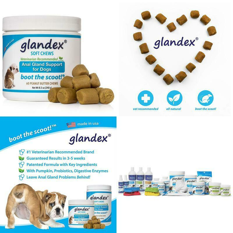 Glandex For Dogs Anal Gland Soft Chew Treats With Pumpk