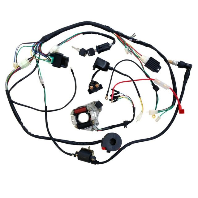 Full WIRING HARNESS CDI Coil Regulator Magneto Lights 110cc 125cc QUAD ATV BIKE