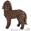 Cockapoo-Bronze-ornament-figurine-sculpture-collectable-Doodle-Dog-lover-gift thumbnail 4