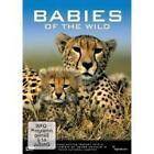 Babies of the wild (2012)
