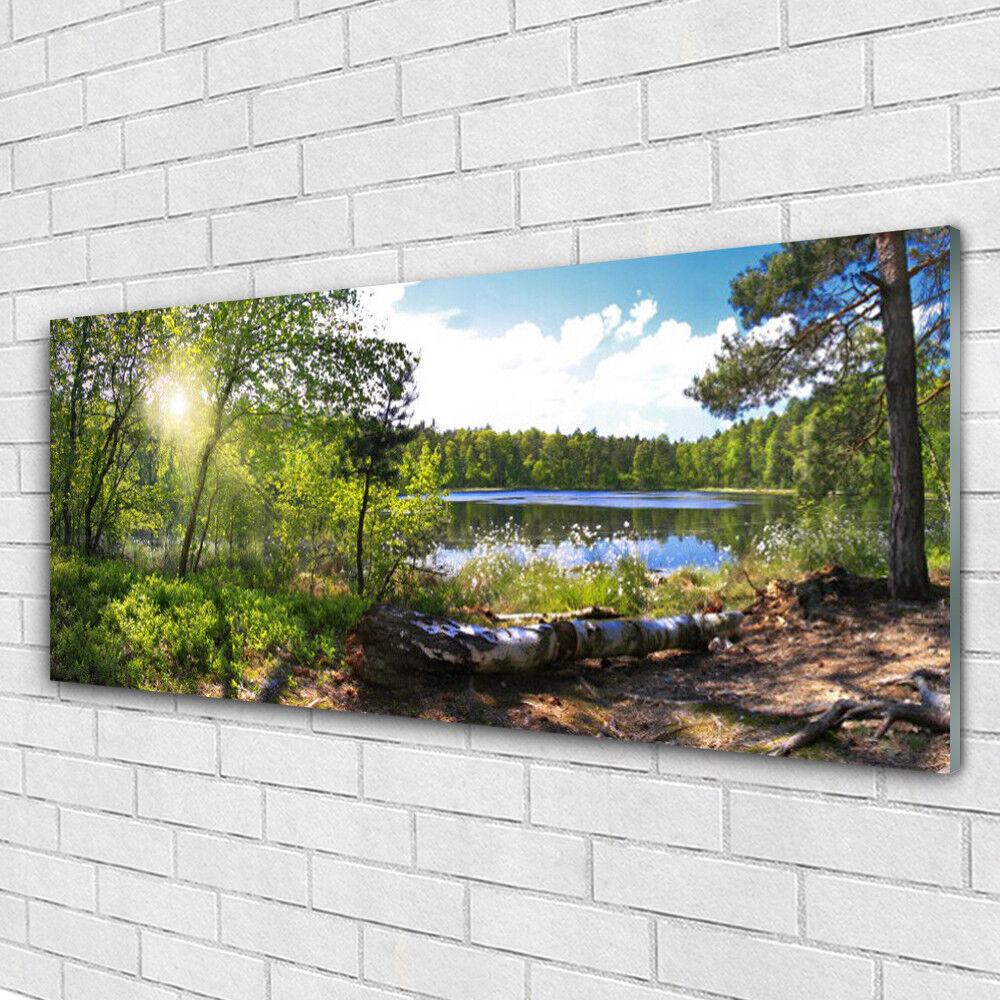 Acrylglasbilder Wandbilder aus Plexiglas® 125x50 Wald See Natur