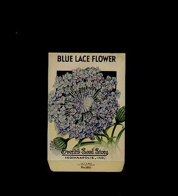 1930's BLUE LACE FLOWER LITHO SEED PACKET - EVERITT'S SEED, INDIANAPOLIS,IND