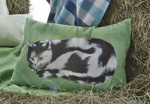 Details zu Kissen Mikesch 40x60 Kissenhülle süße Katze wie gemalt schwarz  weiß grün Proflax