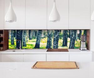 Adesivo cucina parete betulla foresta baum lamina piastrelle