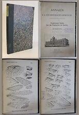 Redtenbacher -Vergleichende Studien über das Flügelgeäder der Insecten 1886 - xz