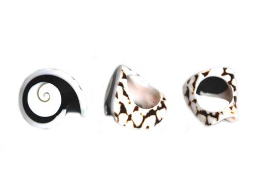 Todo anillo verdadera concha de bali naturaleza joyas piezas únicas a mano concha nacar