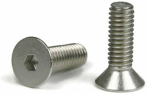 Tamper Proof Socket Set Screws 1//4-20 Stainless Steel Security Screws with Bit 1//4-20 x 1//2 inch Qty 100