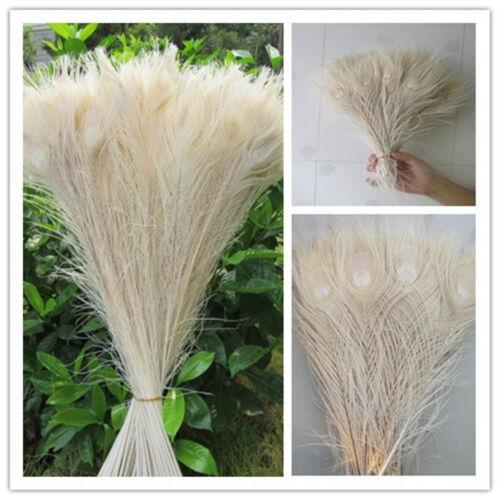 Magnifique Plume De Paon Oeil 10-32 in 25-80 cm livraison gratuite Vente en gros