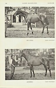 1896-racing-illustrated-print-titled-034-sir-visto-amp-quarrel-034
