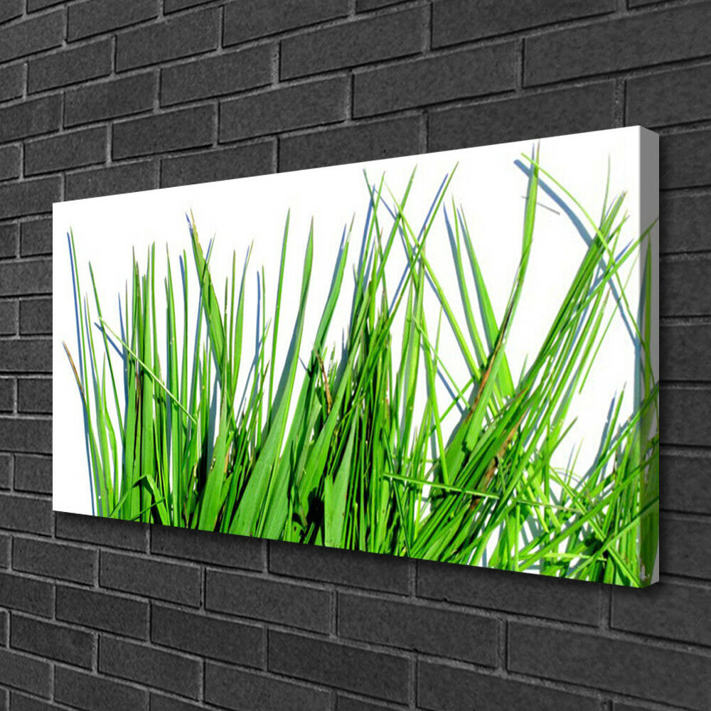 Canvas print Wall art art art on 100x50 Image Picture Grass Floral 4463ec
