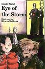 Eye of the Storm by David Webb (Paperback, 2001)