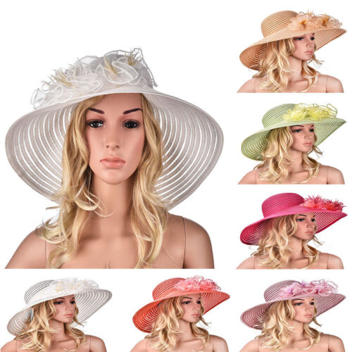Imported from Taiwan Women's Feather Kentucky Derby Wedding Race Church Hat A366