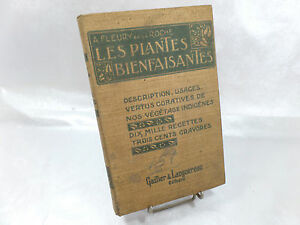 LES-PLANTES-BIENFAISANTES-1927