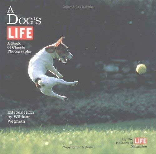 Dog's Life Vol. 1 : A Book of Classic Photographs by Life Magazine