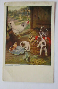 Bauernhof-Tiere-Katze-Hund-Kuenstlerkarte-sign-John-Hayes