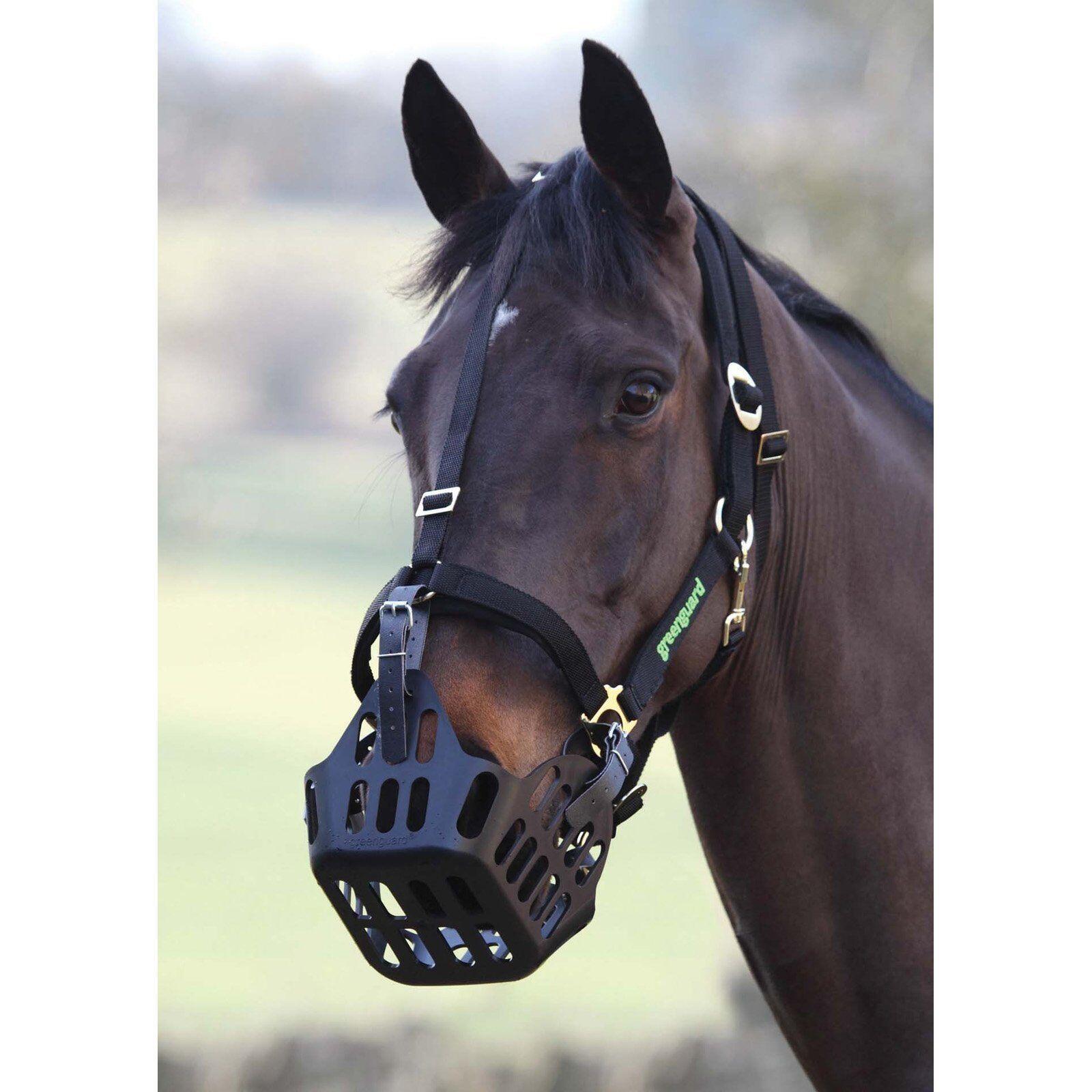 Shires GreenGuard Headcollars & Muzzles - Various Available Separately