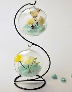 Glass-hanging-globe-terrarium-for-air-plant-moss-wedding-gift-candle-decor-stand