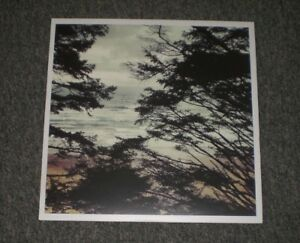 WL-Light-Years-2016-Shoegaze-Indie-Rock-Colored-Vinyl-FAST-SHIPPING