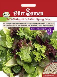 Dürr  BIO Babyleaf-Salat Spicy Mix ca 750 Samen Kübel  geeignet Balkon  4264